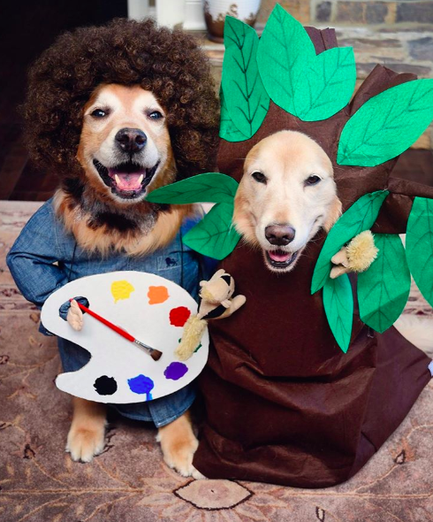 golden retrievers dress up as wizard of oz characters