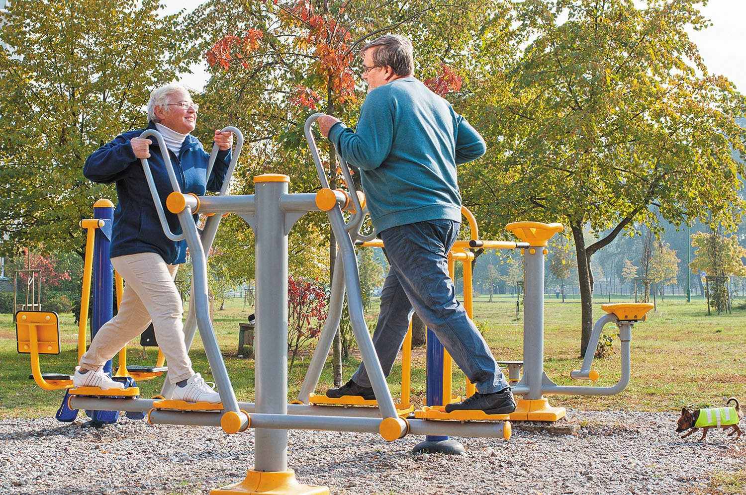 playground for elderly boosts activity and decreases loneliness