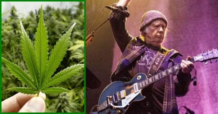 Neil Young Claims His U.S. Citizenship Application Is Being Delayed Because He Uses Marijuana