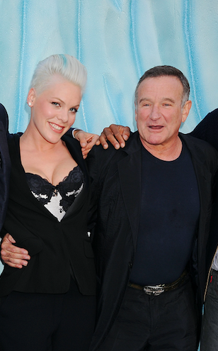 pink recalls time robin williams did stand up for her after she lost at the grammys