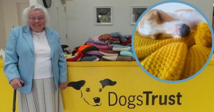 Maisie Green knits love into every strand