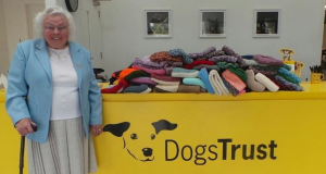 Maisie Green knits coats and blankets for Dogs Trust shelter animals