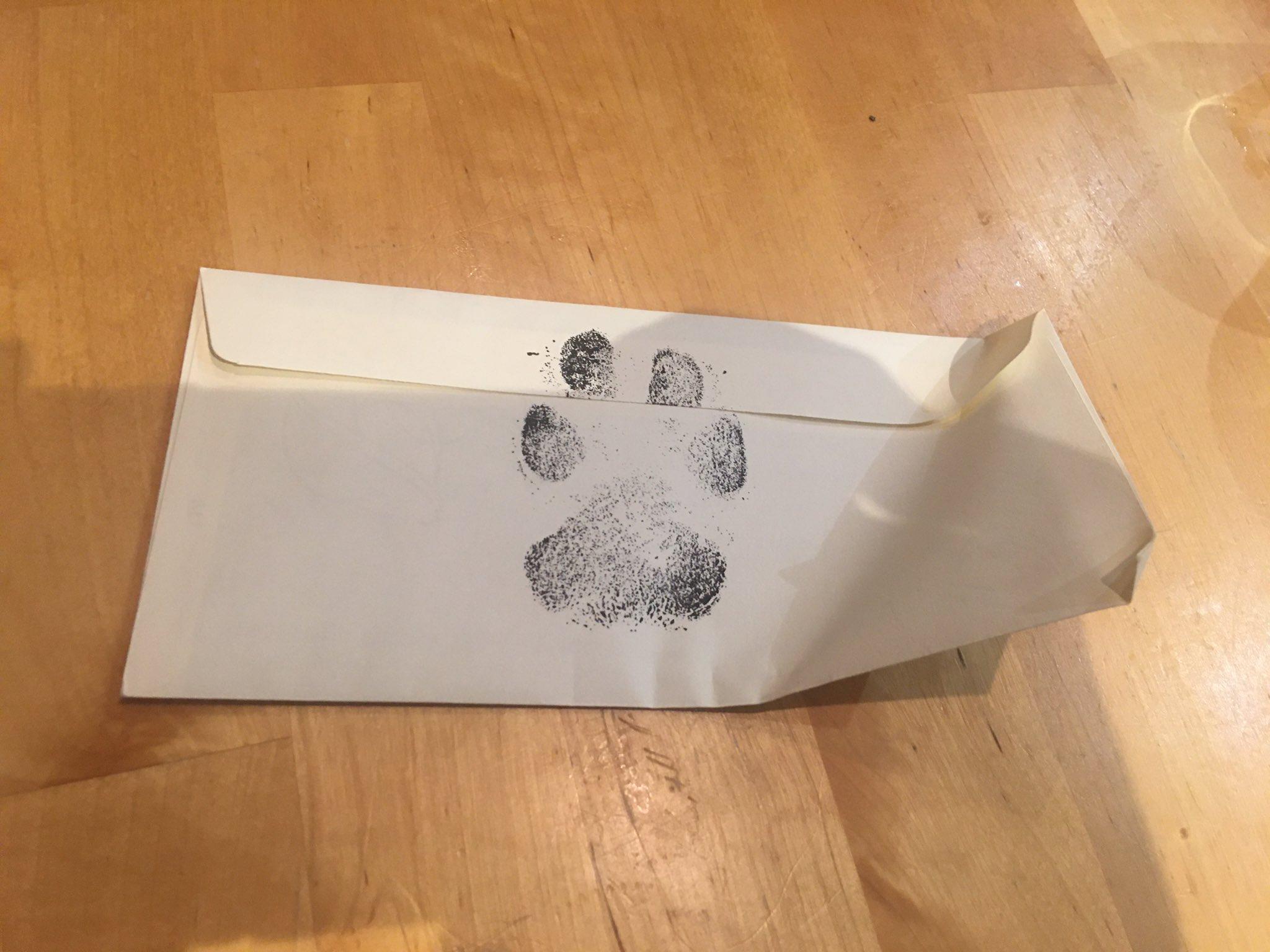 paw print envelope