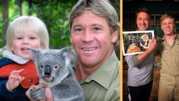 Robert Downey Jr. Reunites With The Late Steve Irwin's Son, Robert Irwin