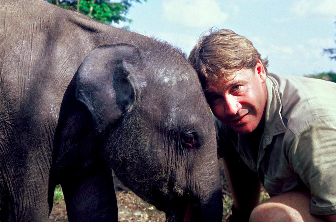irwin family opens elephant sanctuary