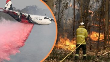 Three US Firefighters Have Been Killed In Plane Crash While Battling Australian Bushfires