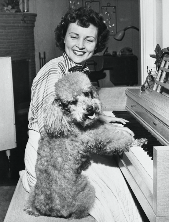 rare photos of betty white and her dogs from 1950s