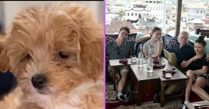 Catherine Zeta Jones shares a photo of the familys new puppy named Taylor
