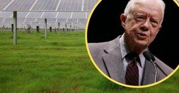 Jimmy Carter powering half of hometown using solar panels