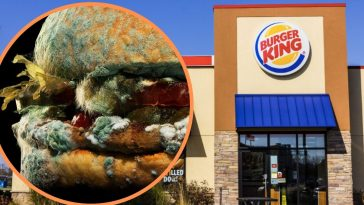 Why Is Burger King Advertising A Moldy Whopper_