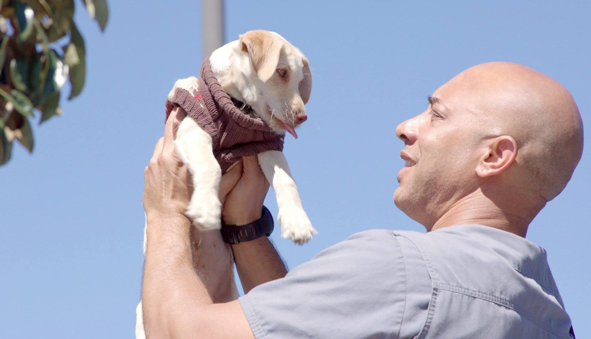 dr kwane stewart and a dog