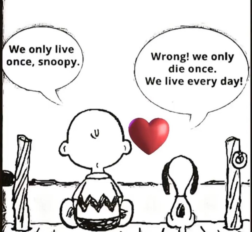 snoopy charlie brown quote