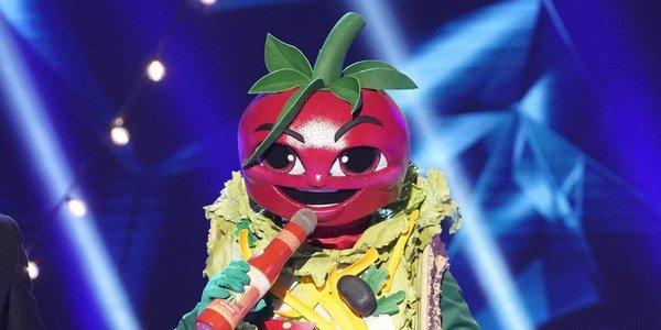 fans think taco on the masked singer is tim allen