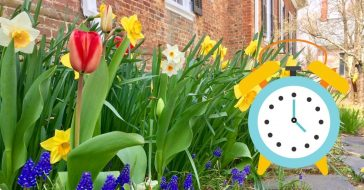 Spring will come at the earliest date since 1896