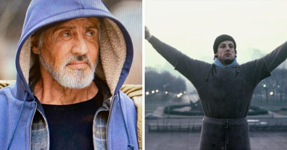 Sylvester Stallone 2020 : Sylvester Stallone: Ergraut und ...