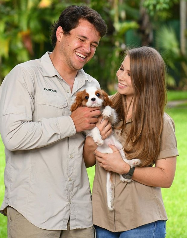 bindi irwin and chandler powell with their dog