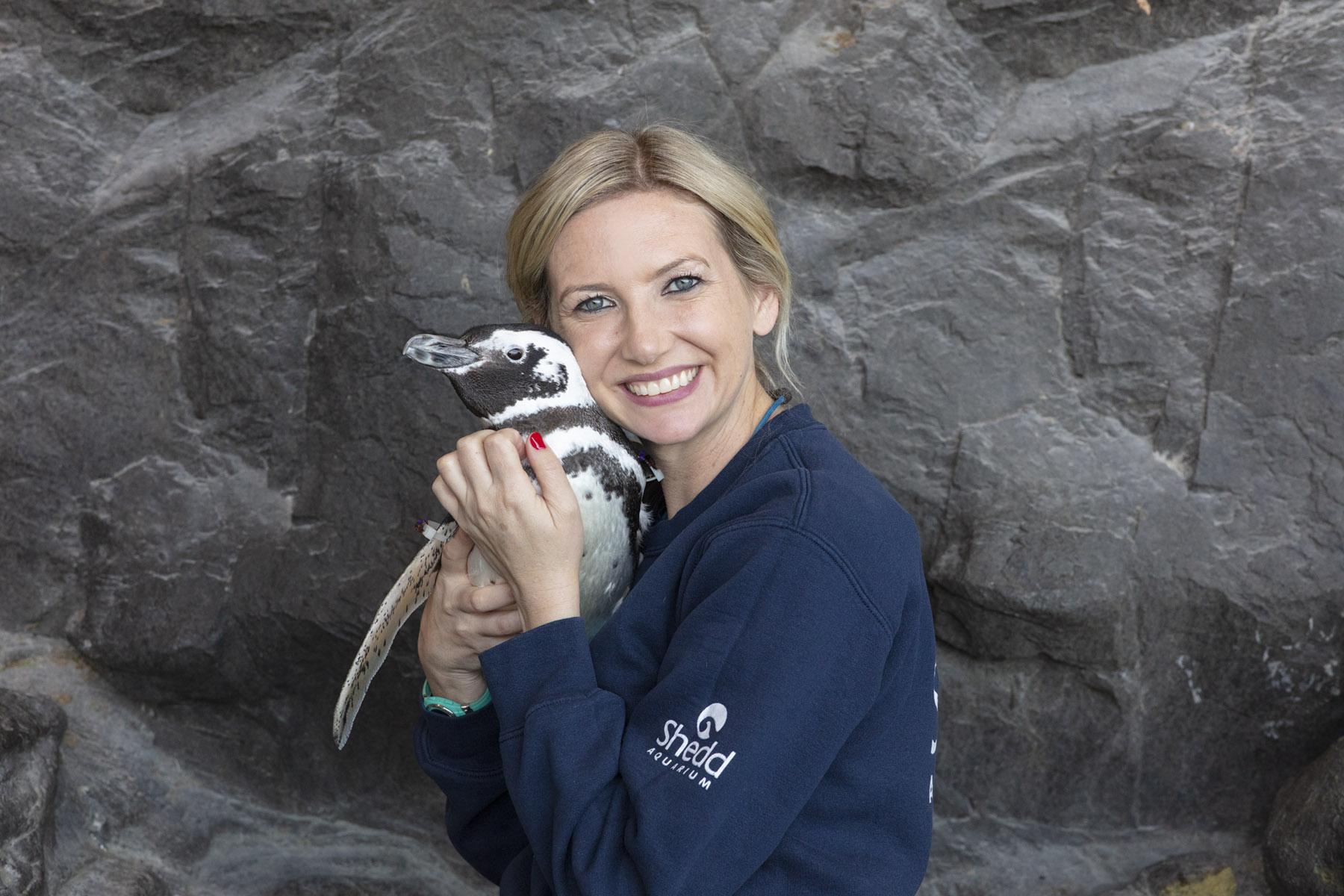 penguin and trainer at shedd aquarium