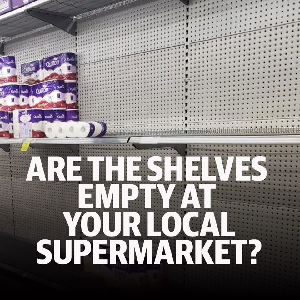 empty toilet paper shelves at grocery store