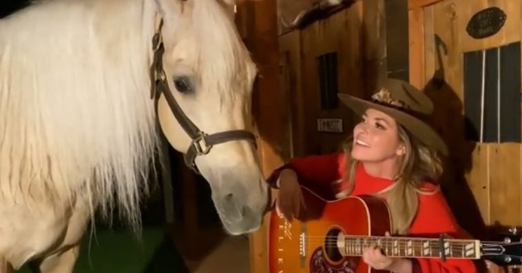 Shania Twain horse steals the show during recent performance
