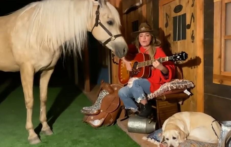 shania twain performance horse dog