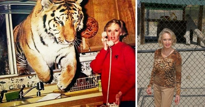 Tippi Hedren still owns big cats
