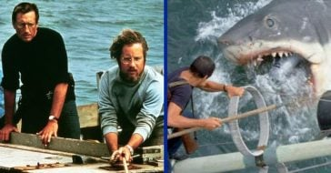 How The 1975 'Jaws' Film Became A Thriller Classic That Still Stands The Test Of Time