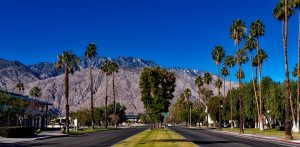 Some people didn't want their vacation to Palm Springs to end