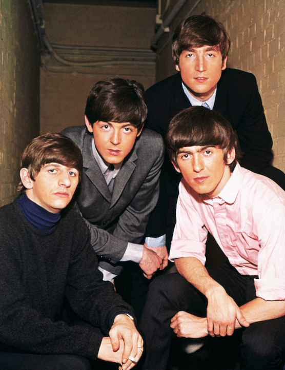 Check Out This New Species Of Beetle Named After The Beatles