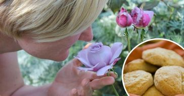 Certain scents trigger happy childhood memories