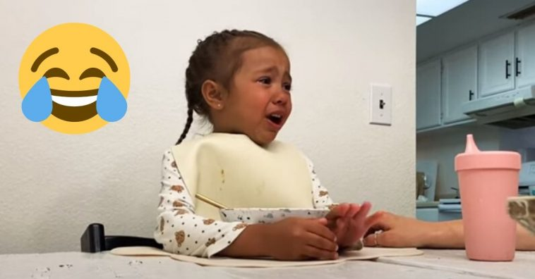 Little girl has a rant about the coronavirus lockdowns and everyone can relate