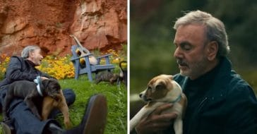 Neil Diamond got puppies adopted from a music video