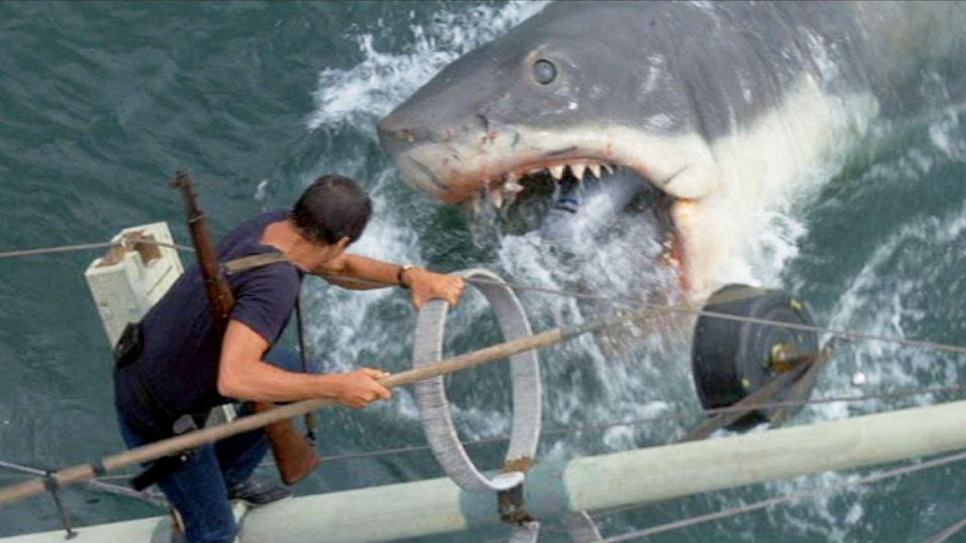jaws scary scene shark