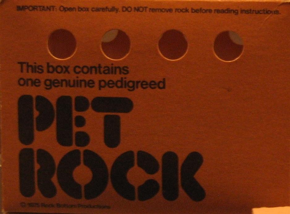 pet rock box
