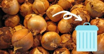FDA and CDC warns people to throw away their onions