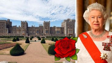 The gardens at Windsor Castle have been opened for the first time in 40 years (1)