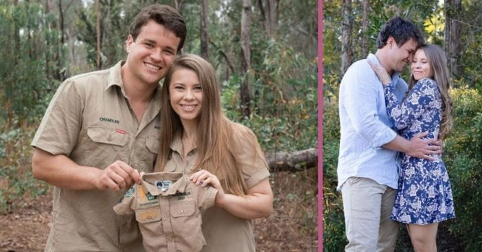bindi irwin could be expecting twins