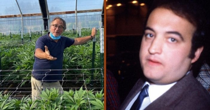 jim belushi thinks medical marijuana would have saved john belushi
