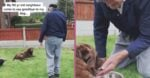 90-Year-Old Neighbor Says Final Goodbye To Furry Friend In Emotional Video