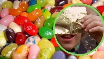 Willy Wonka's search for a golden ticket comes to life