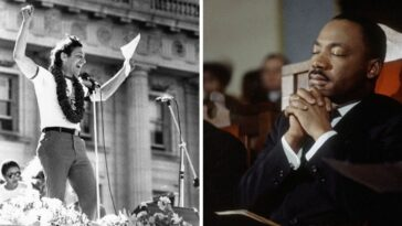 Harvey Milk And Martin Luther King Jr.