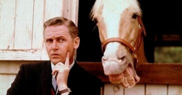 Alan Young and the horse Mister Ed were friends off set