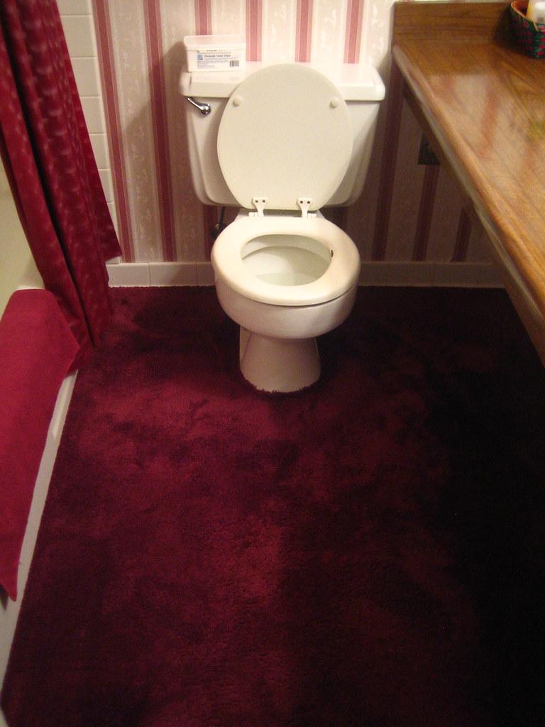 Carpet In The Bathroom