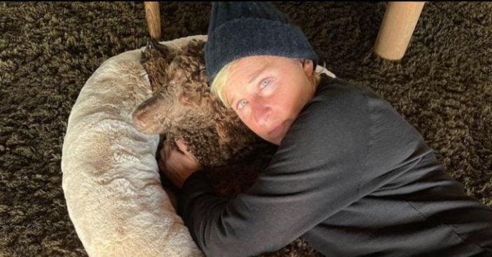 Ellen DeGeneres tests positive for the coronavirus