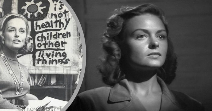 Joining the anti-war movement was very personal for Donna Reed