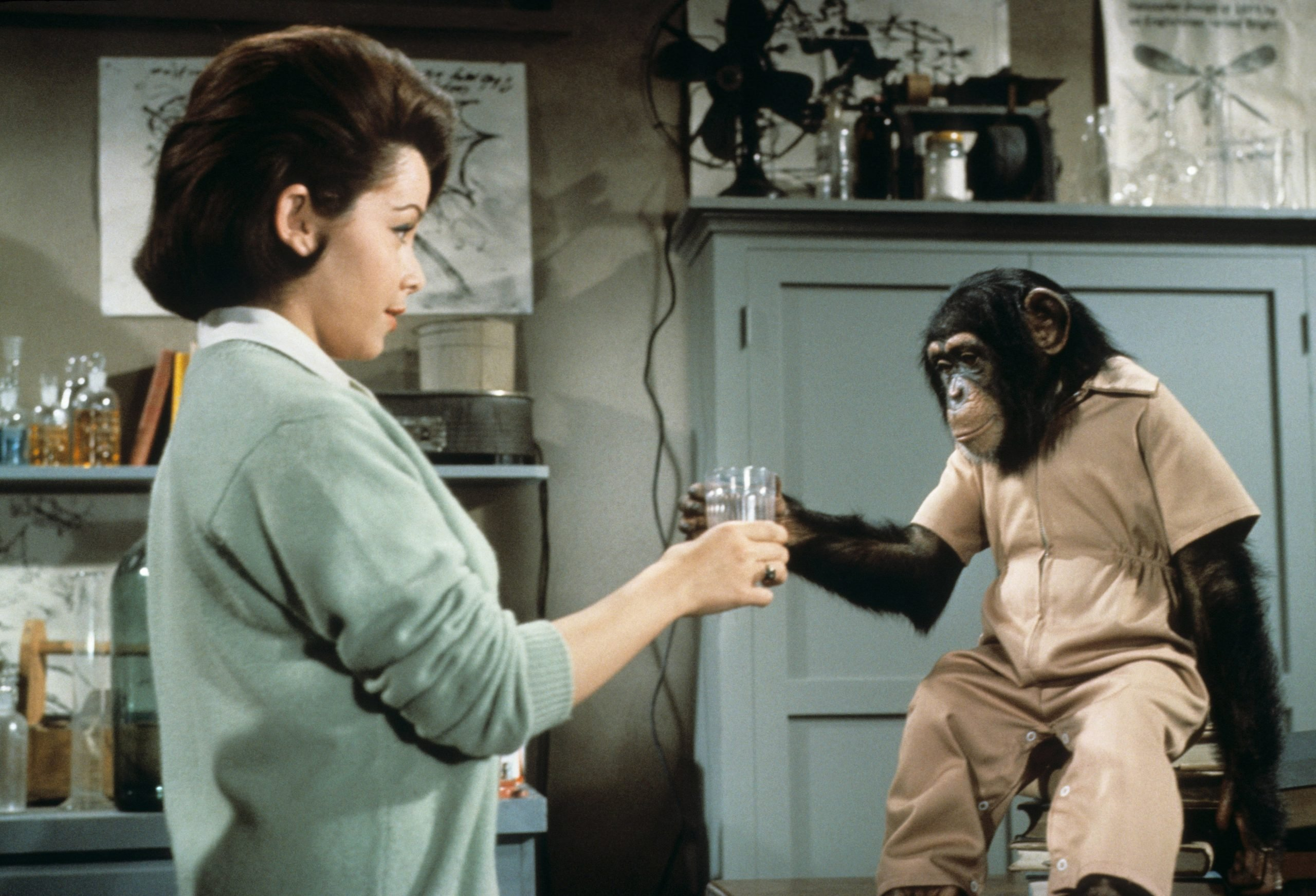 annette-funicello-the-monkeys-uncle