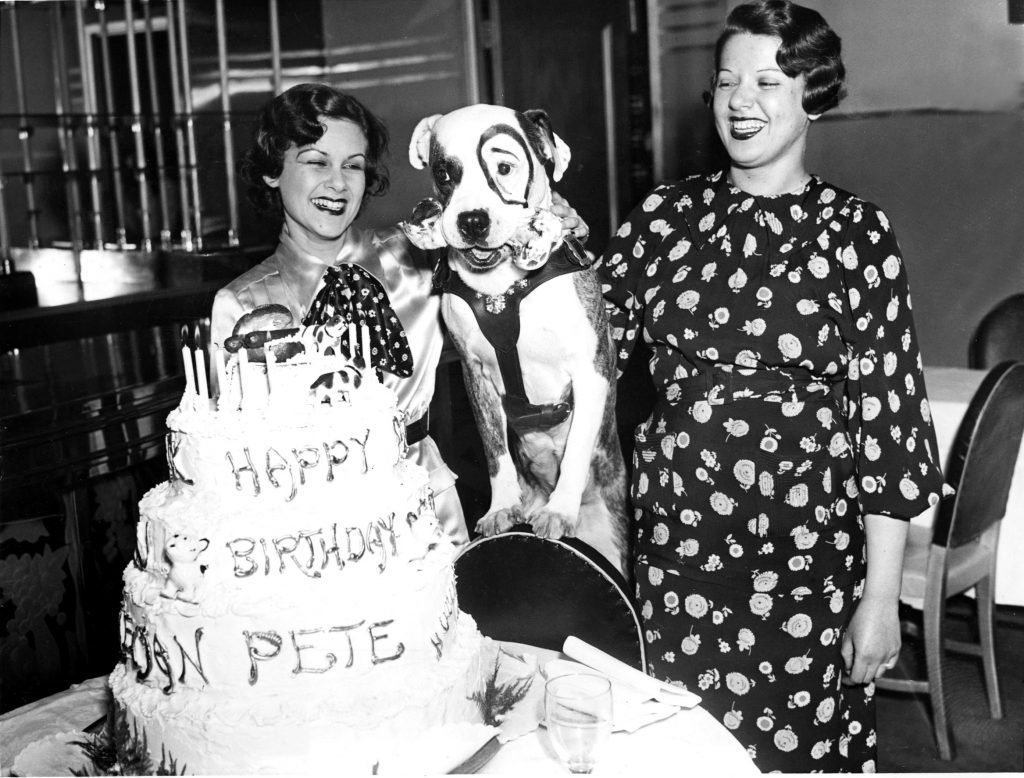 little-rascals-petey-gets-a-birthday-cake