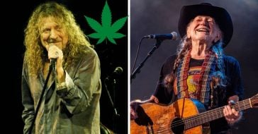 Robert Plant says Willie Nelson gives away weed to everyone