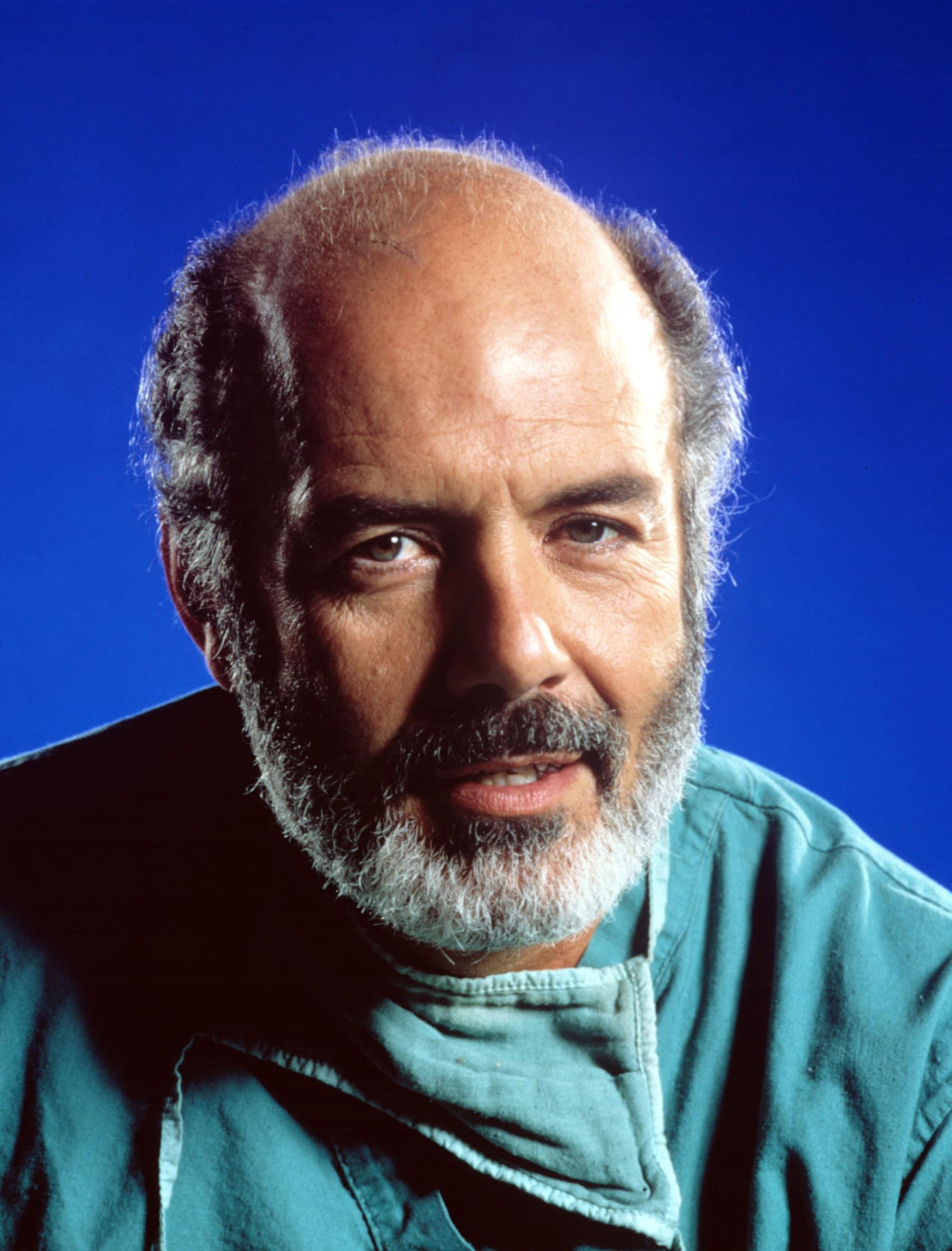 Roberts as Trapper John M.D.