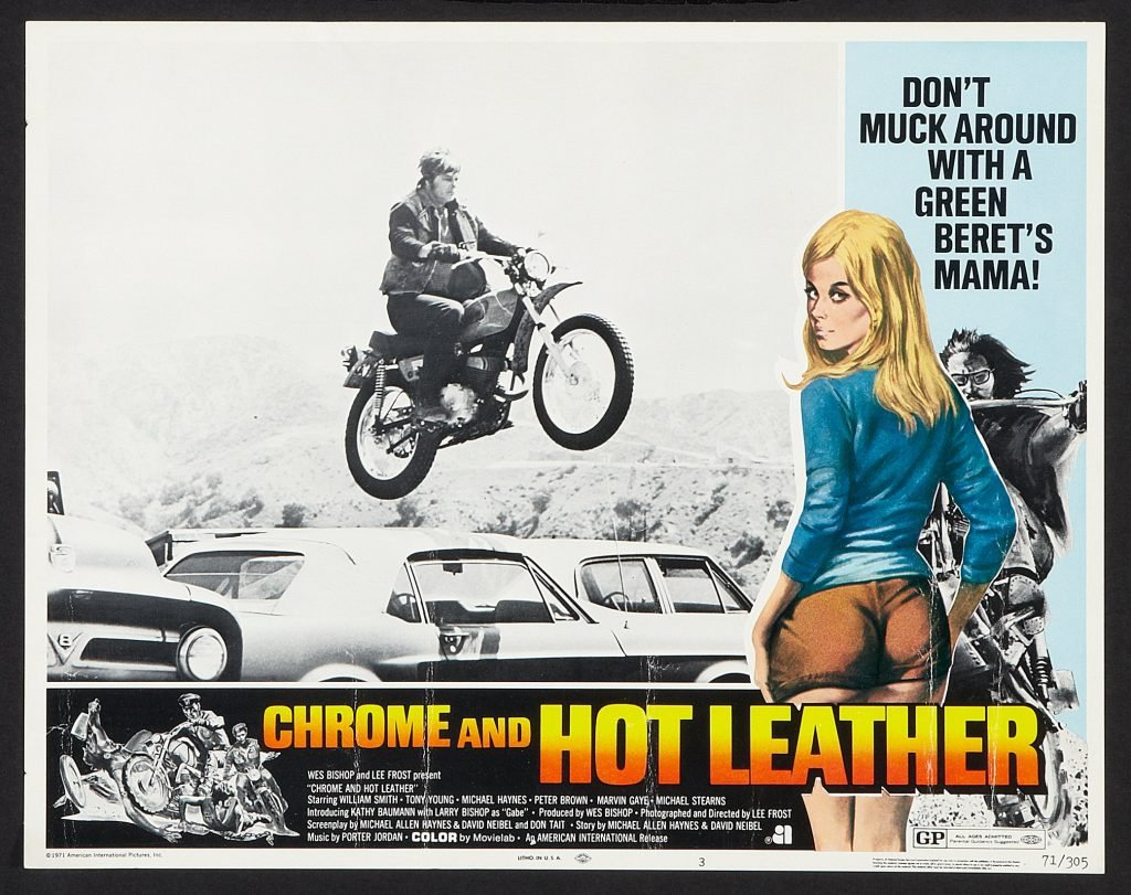 cheryl-ladd-chrome-and-hot-leather
