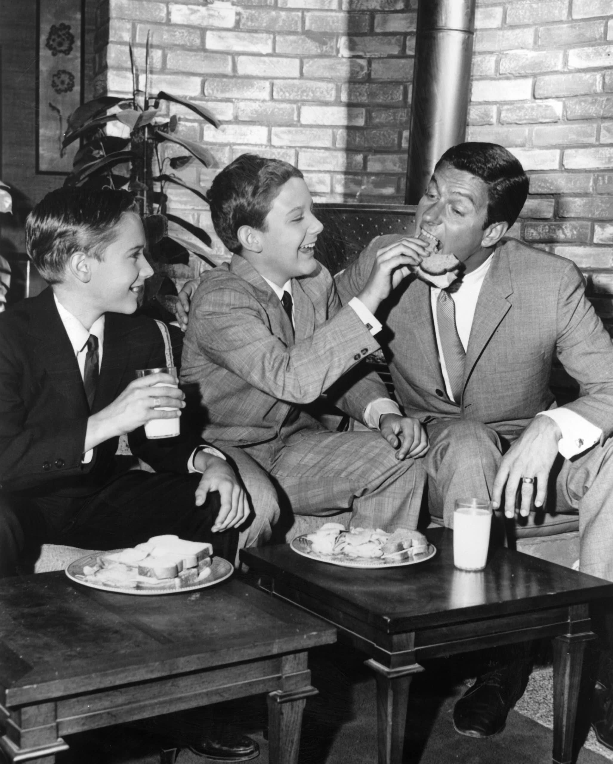 THE DICK VAN DYKE SHOW, Barry Van Dyke, Christian Van Dyke, Dick Van Dyke